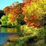 Játszi őszben álltam