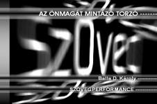 Szövegperformanszom: Pécs, 2006